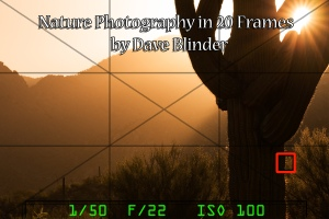 Nature Photography in 20 Frames