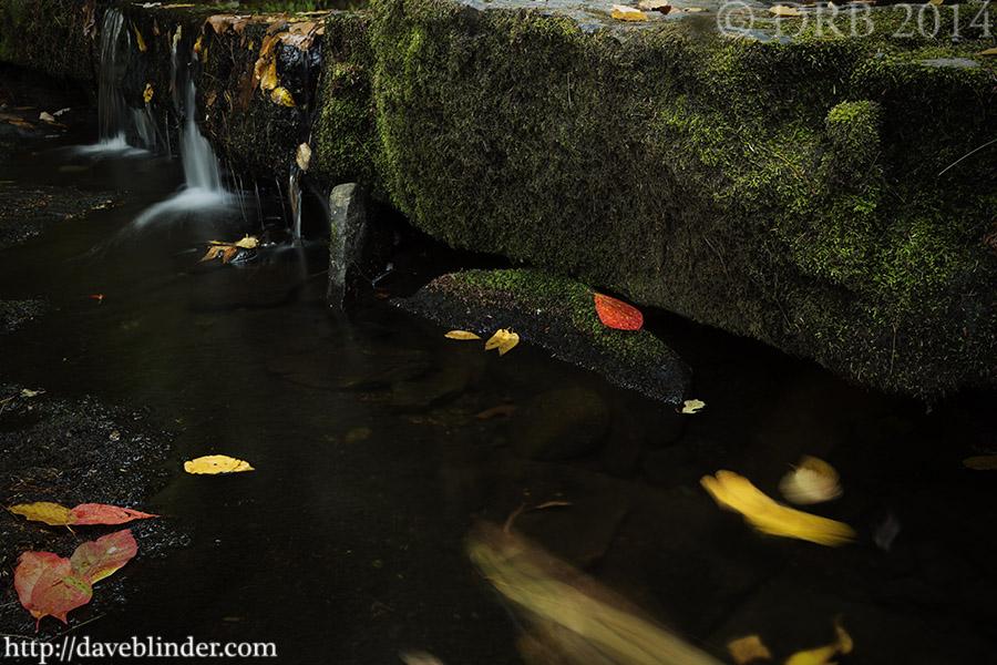NJ Landscape Photographer