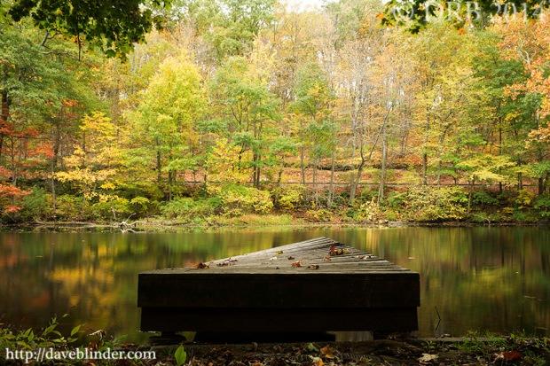 New Jersey Fall Landscape Photo