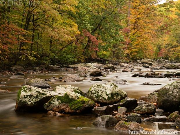 NJ nature photographer