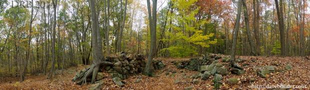 New Jersey Fine Art Nature Photoraphy