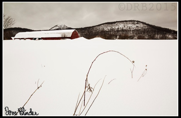 NYS Winter Fine Art Photo