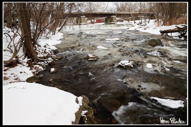 NJ Nature Photography