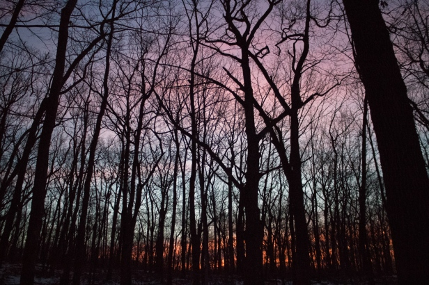 Dawn sky. Winter Solstice 2016 Hike by the Morris County Park Commission