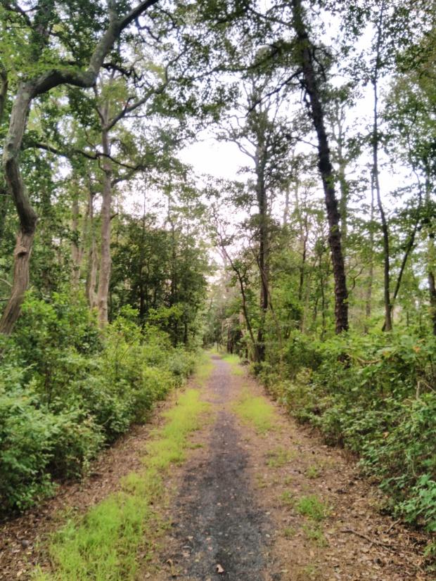 Ocean County NJ hiking