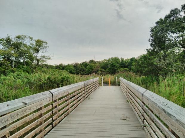 NJ hiking trail