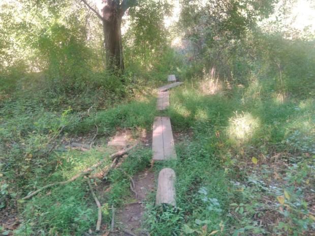 NJ hike