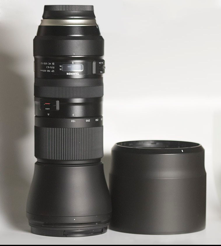 Bird Photography DSLR Lens