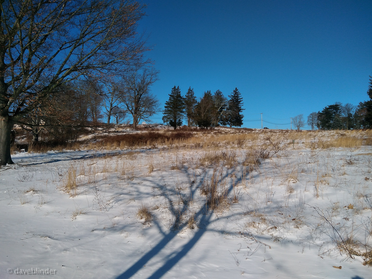 Central Park of Morris