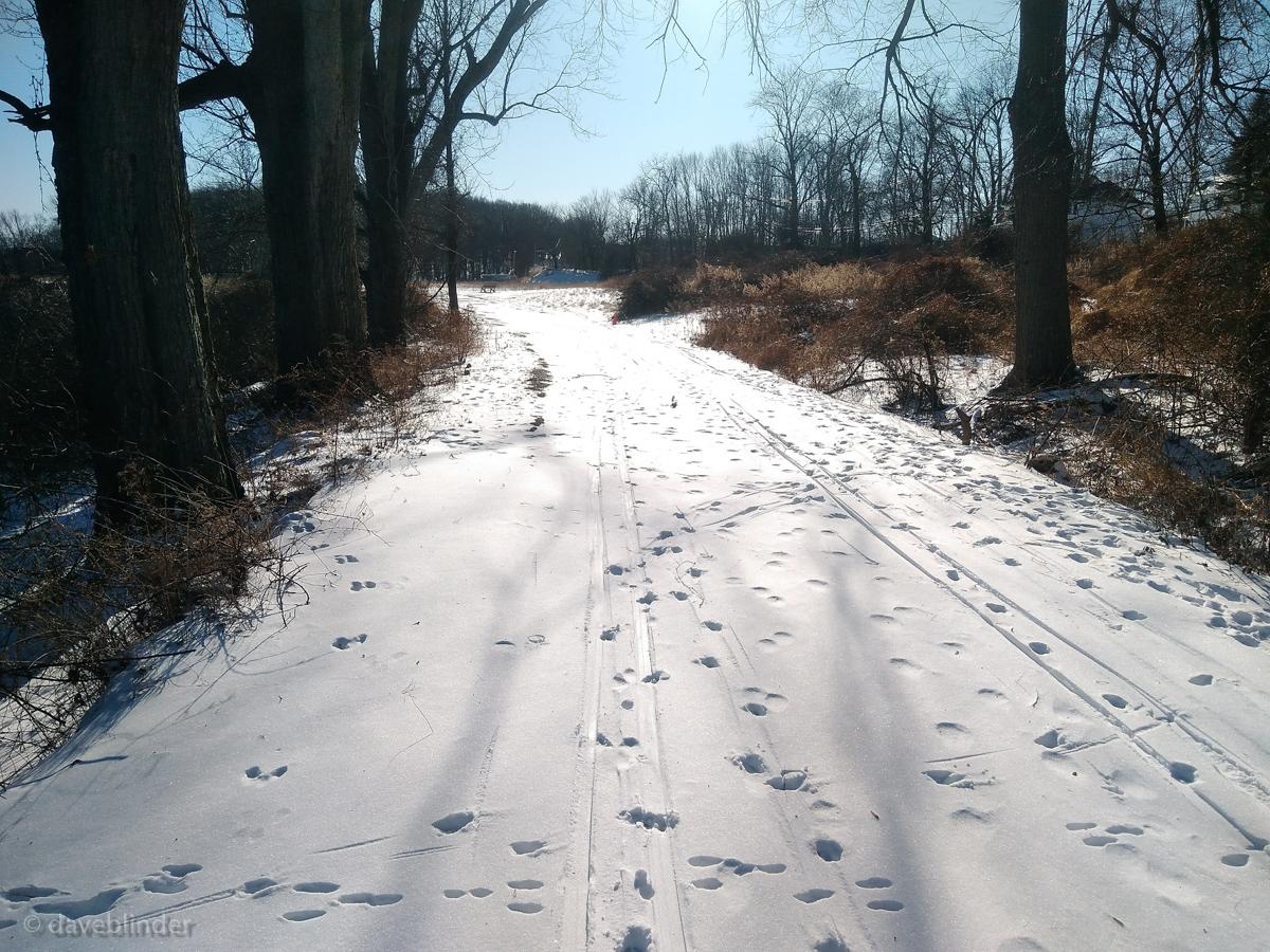 X-country skiing NJ