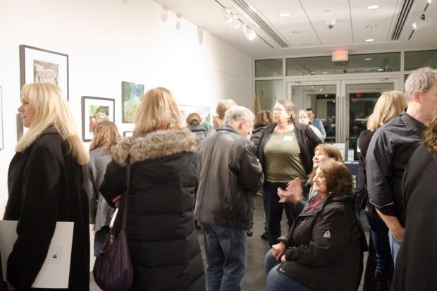 Morris Museum Visitors