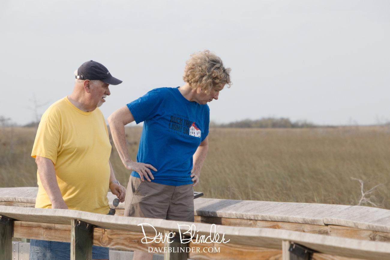 Florida Everglades tourism