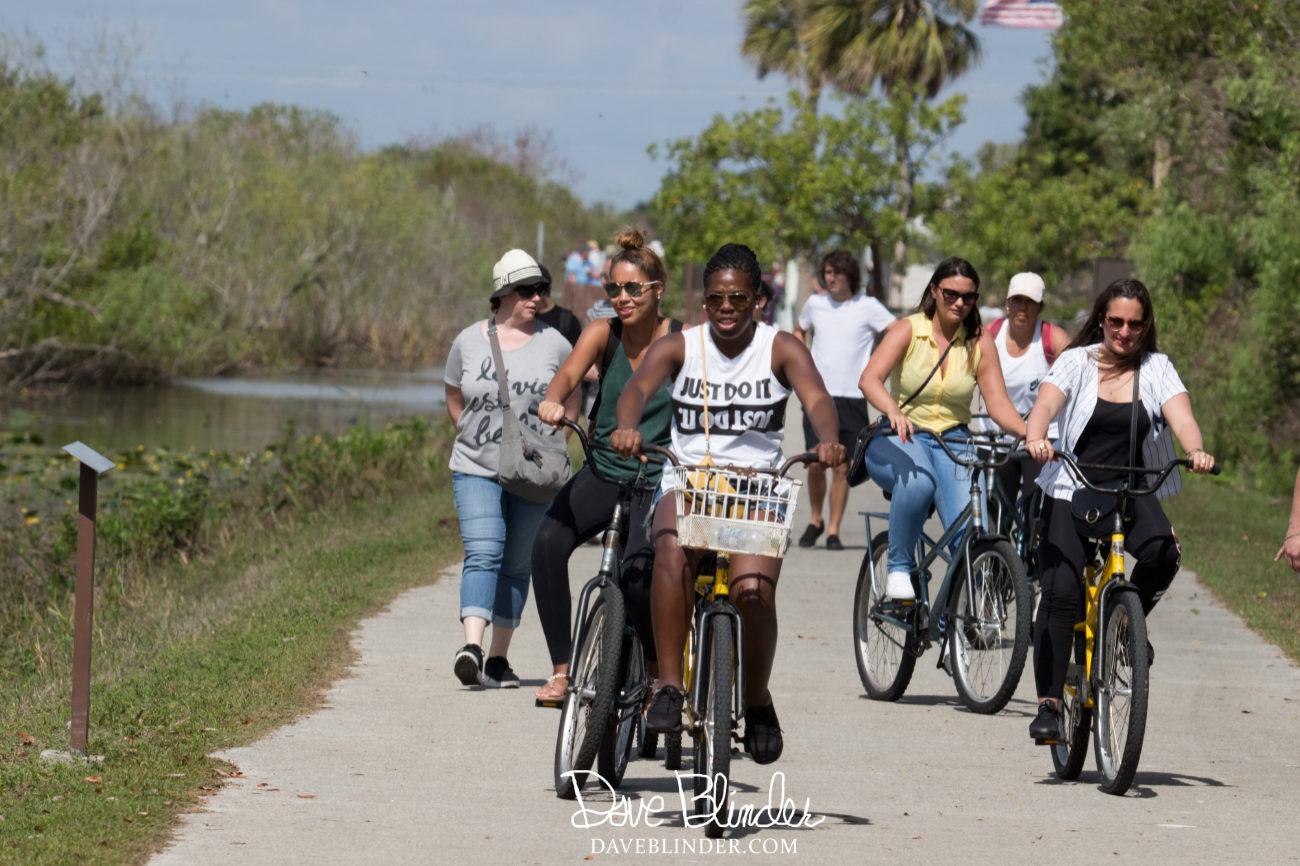 Biking at Shark Valley Florida