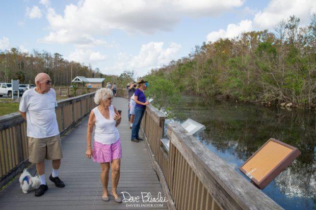 Everglades Florida dog friendly