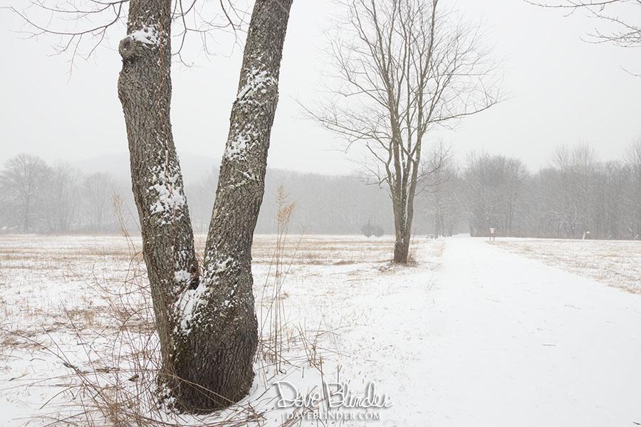 tourne county park photograph