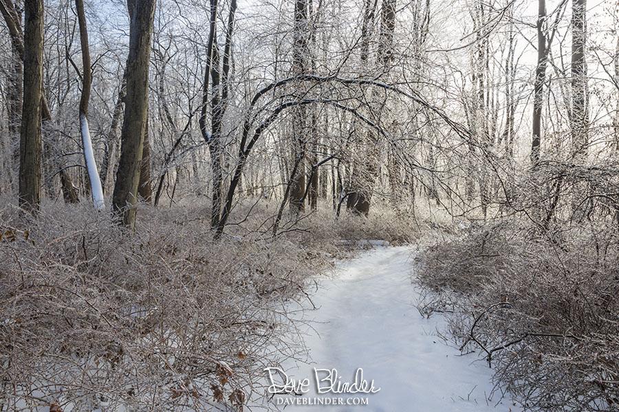 Morristown National Historic Park hiking