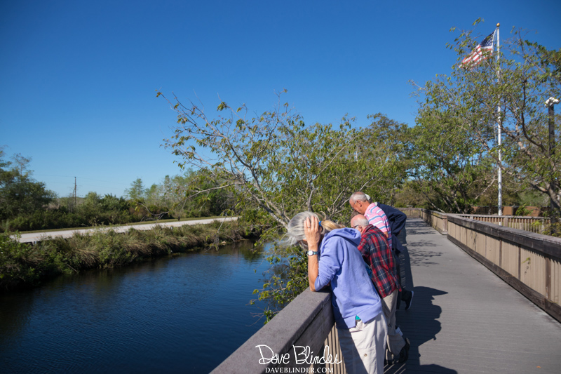 Big Cypress Oasis Visitor Center picture